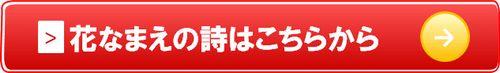 hananamae_kochira
